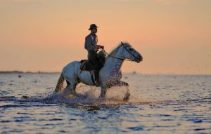 horse back riding in mykonos